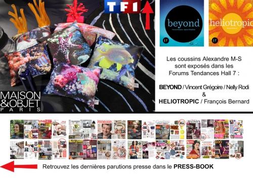 salon maison et objet,alexandre m-s,tf1,beyond,nelly rodi, vincent grégoire,françois bernard